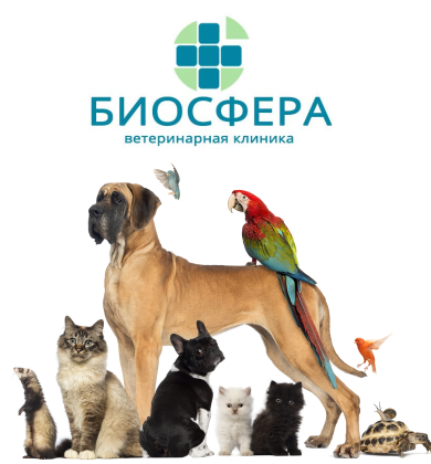 Биосфера Киров