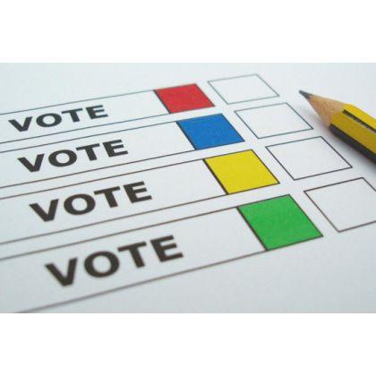 Последний голос можно будет отдать 31 декабря