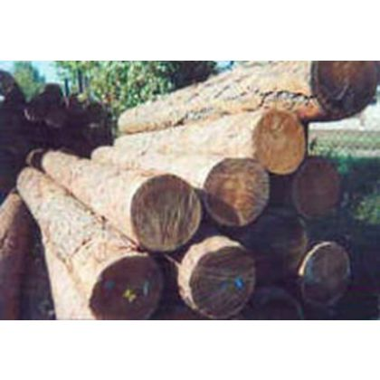 Контроль за оборотом древесины