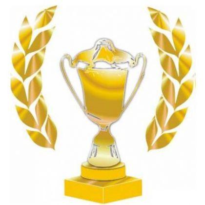 Кировский Фонд поддержки предпринимательства получил платиновую премию международного конкурса