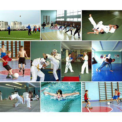 В Кировской области на развитие физкультуры и спорта в 2010 году направят 432 млн руб.